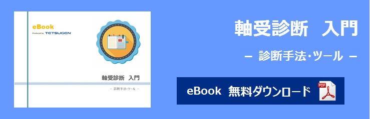 banner_ebook_brg